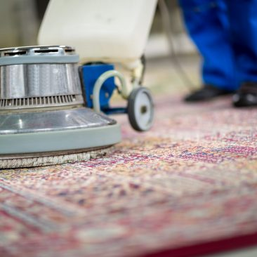 Limpeza de Carpete Lavanderia Clean Express
